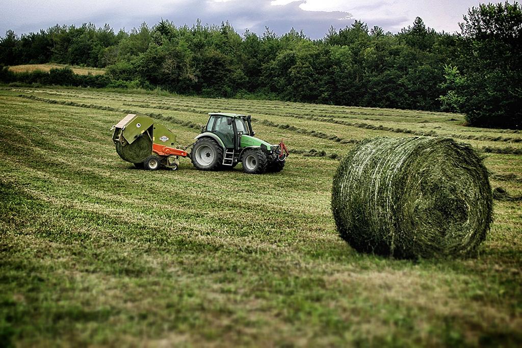 Ricostruiamo insieme il fienile della fattoria corradini for Grandi planimetrie della fattoria