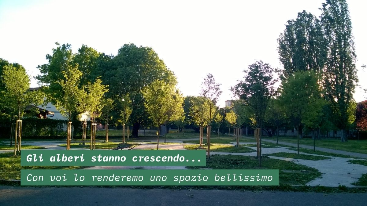 Dove sorgerà BOB: fra gli alberi, davanti la biblioteca di Baggio