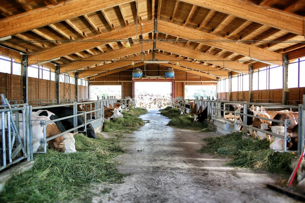 Ricostruiamo insieme il fienile della fattoria corradini for Piani di riproduzione della fattoria