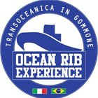 Ocean RIB Experience 